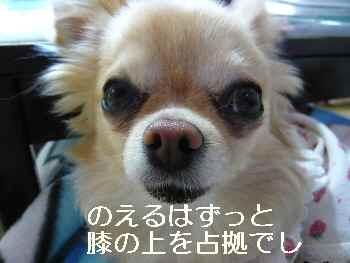 blog2013050404.jpg
