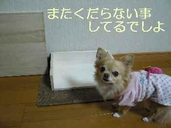 blog2013112901.jpg