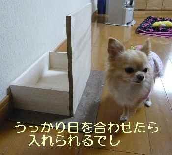 blog2013112902.jpg