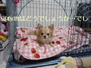 blog2013120203.jpg