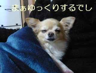 blog2013120701.jpg