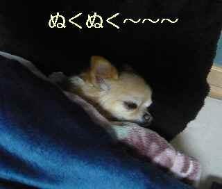 blog2013120702.jpg