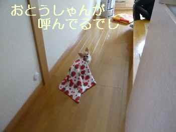 blog2013120903.jpg