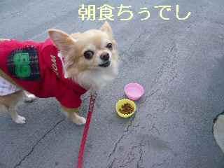 blog2013121101.jpg