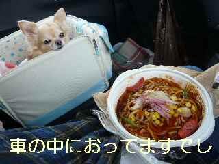 blog2013121105.jpg