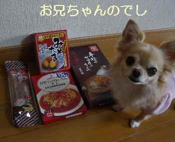 blog2013121106.jpg
