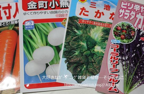 秋まき野菜種