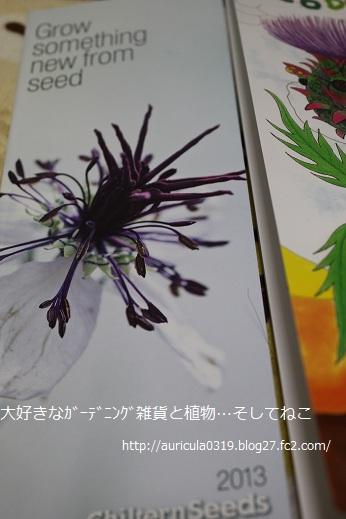 チルタンシード・カタログ(裏)