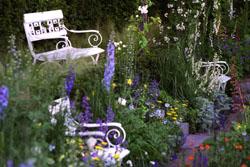 250 x Chelsea garden bench