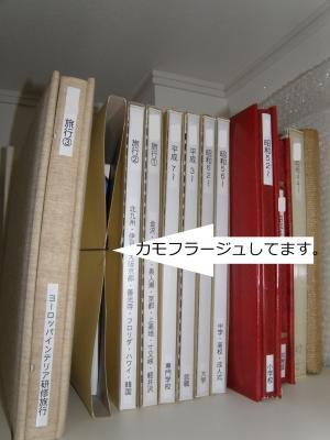 P1140083書類:カモフラージュ