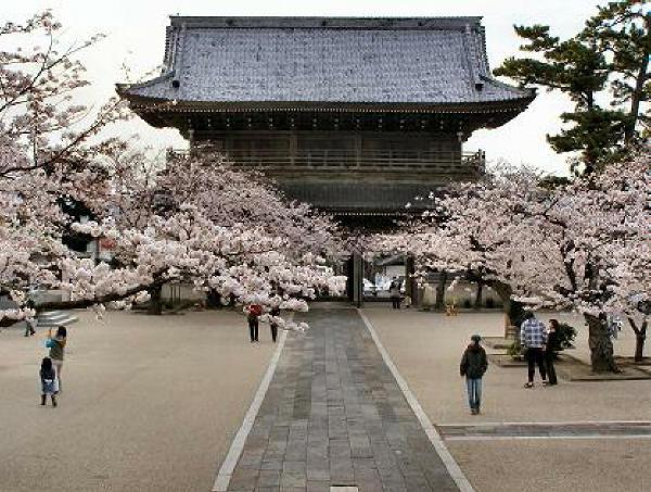 浄土宗光明寺(鎌倉)