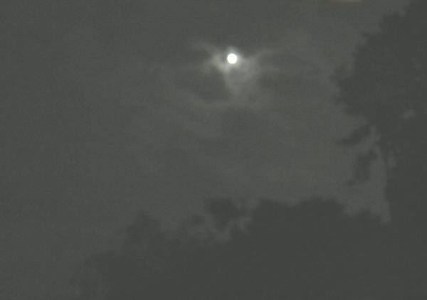 雲も切れてお月見