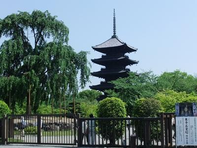 新緑の中の東寺の五重塔