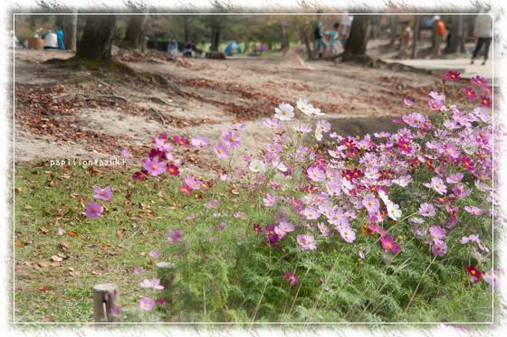 20141012_IMG_04.jpg