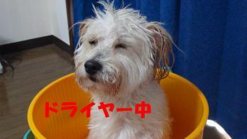 s-6お風呂