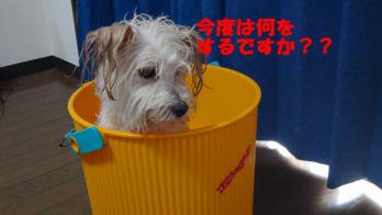 s-5お風呂