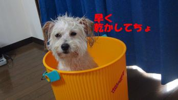 s-4お風呂