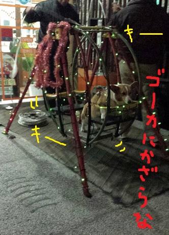 20131214-2.jpg