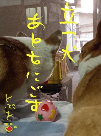 20140105-16.jpg