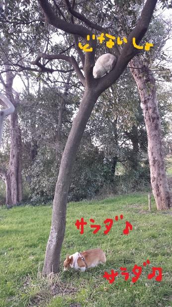 20140106-4.jpg
