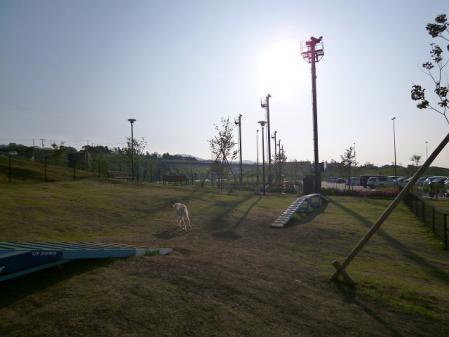 2012-06-04 イアンに会いに犬山 007s