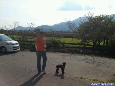 10_20121008204001.jpg