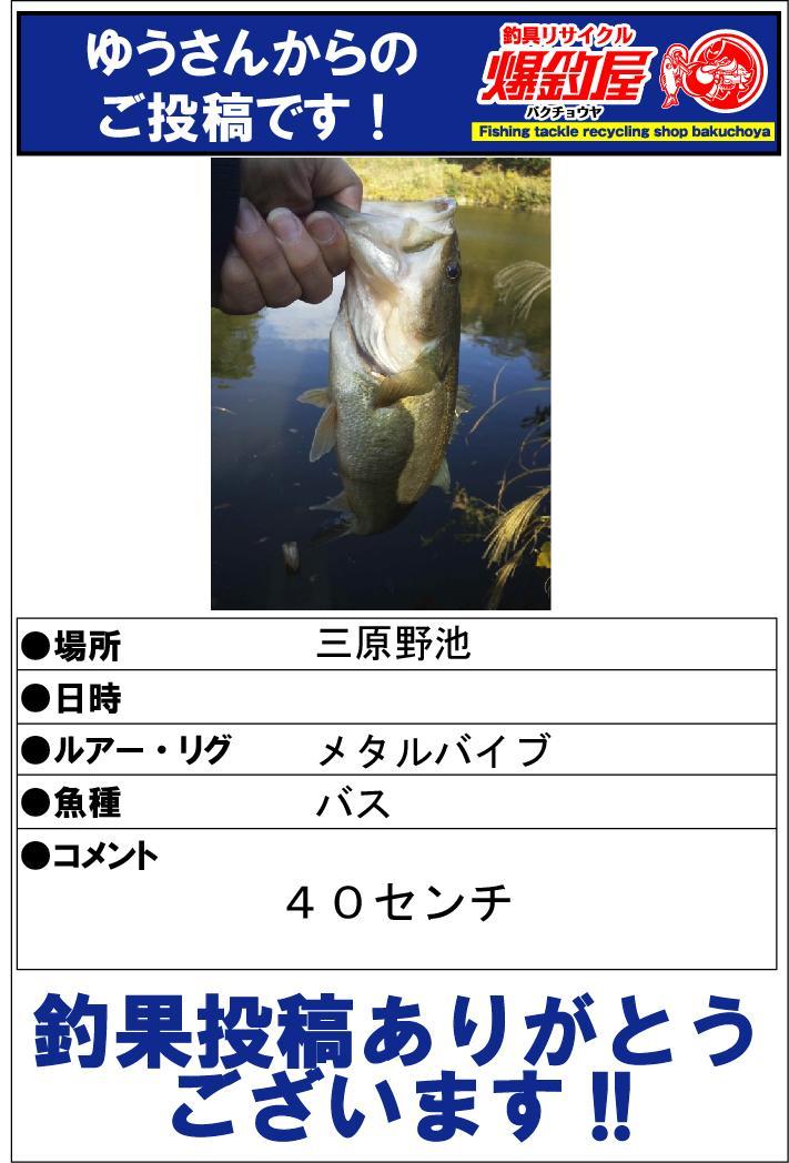 ゆうさん20131204