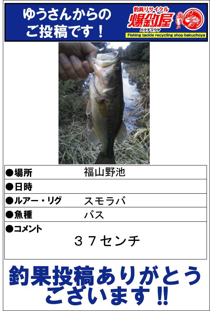 ゆうさん20131209