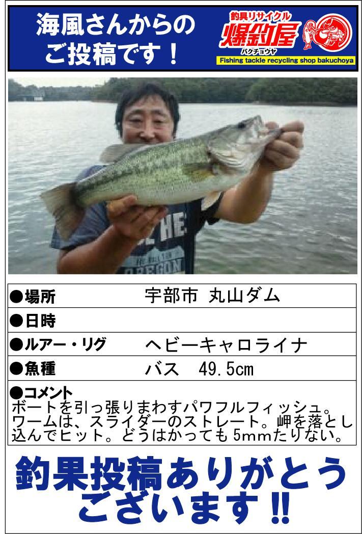 海風さん220141017