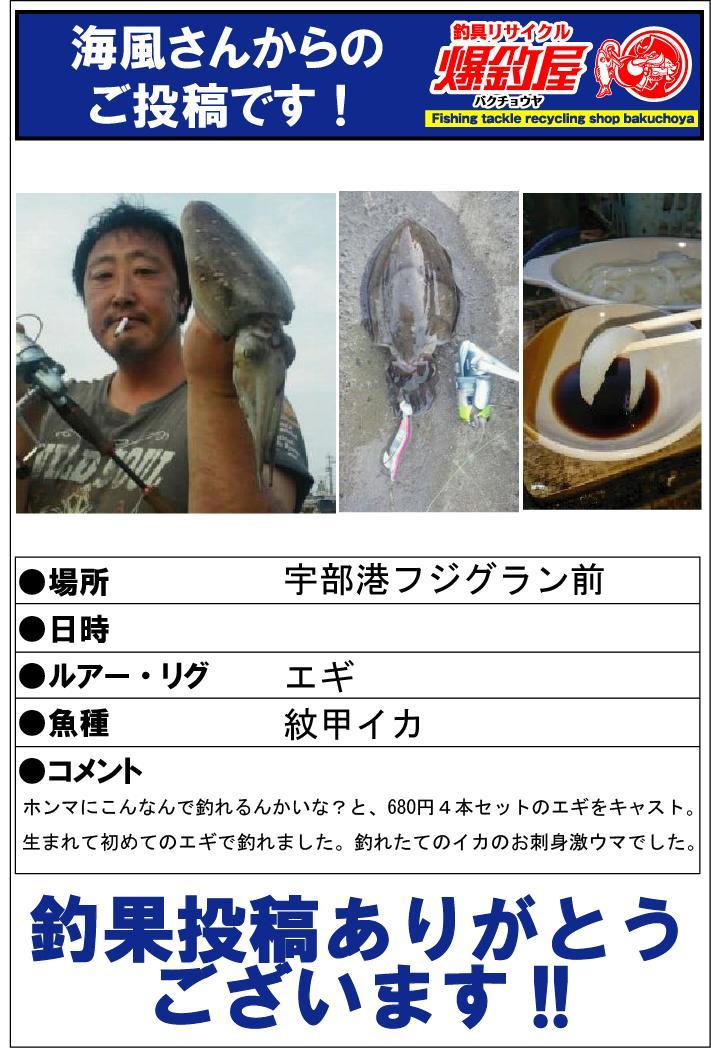 海風さん20141019
