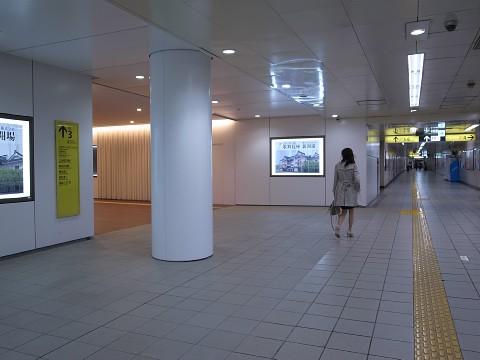 hayakawakoro12.jpg