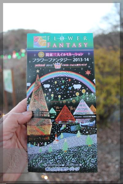足利フラワーパーク イルミネーション 20131215