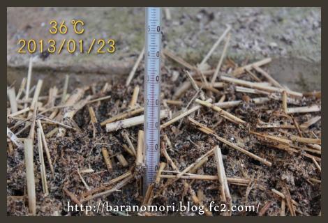 稲わら 竹粉 ボカシ 堆肥