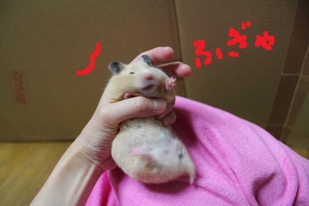 ・・・ぴーす♥