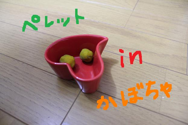 IMG_1717.jpg
