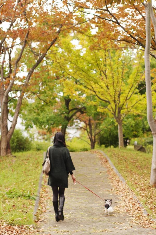 20121103011_B.jpg