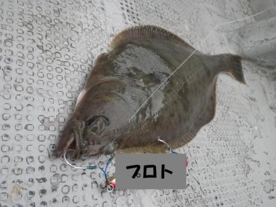 2_convert_20120704093623.jpg