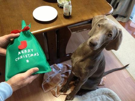 クリスマスプレゼント1