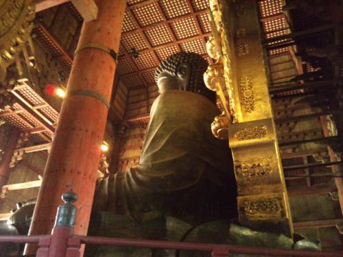 奈良の大仏うしろ