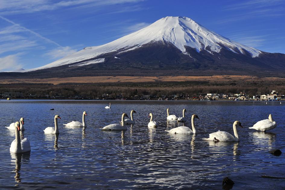 DSC8338_山中湖.jpg