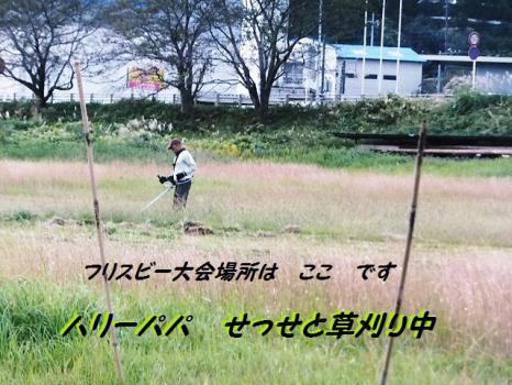 K9 富士川 河川敷大会