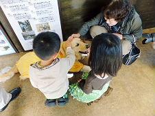富士 盲導犬協会