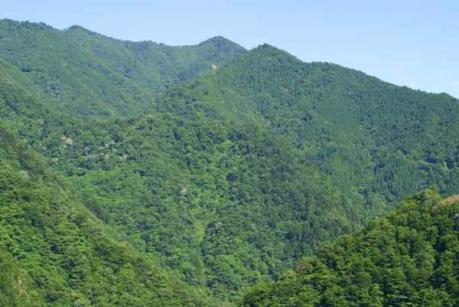 懐かしの山