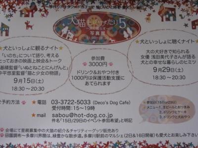 IMG_0682_2.jpg