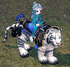 mabinogi_2013_01_01_004.jpg