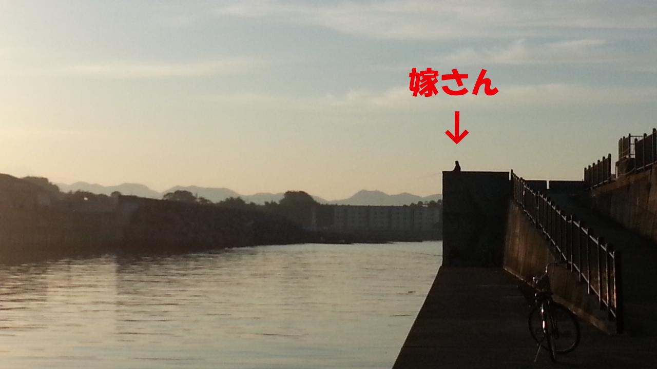 20121027_064700-1.jpg