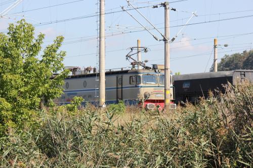 S-tog121008-15.jpg