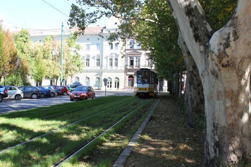 S-tog121008-34.jpg