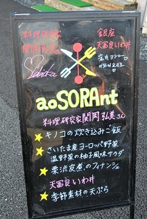 aoSORAnt2013_11_1.jpg