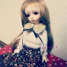 IMG_20121111_020433.jpg